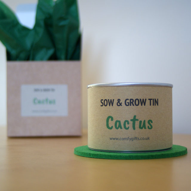 Cactus grow your own gift set