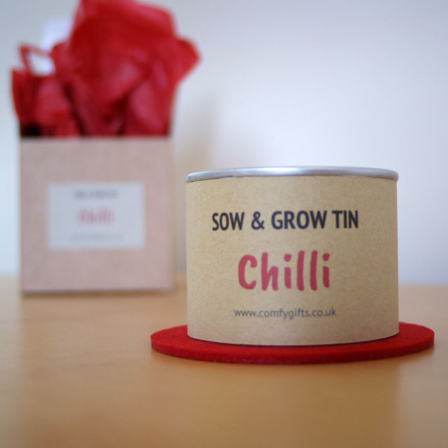 Chilli plant grow your own gift set