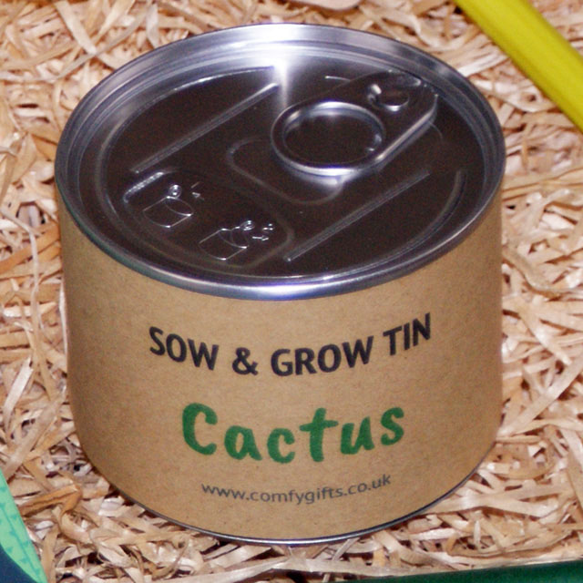 Grow your own cactus kit delivered