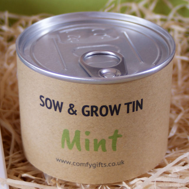 Grow your own mint - get well soon gifts UK